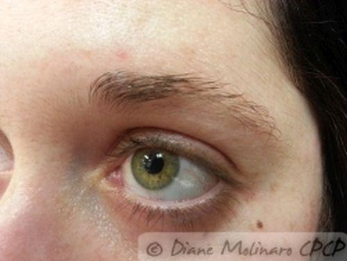 Hair stroke brows