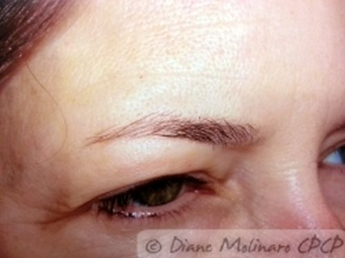 hairstroke brows before left